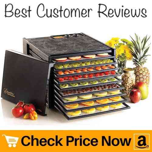 Excalibur 3926TB 9-Tray Electric Food Dehydrator