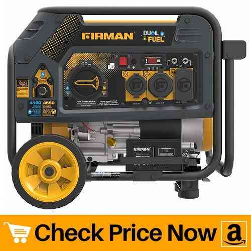 Firman H03651Dual Fuel Electric Start Generator