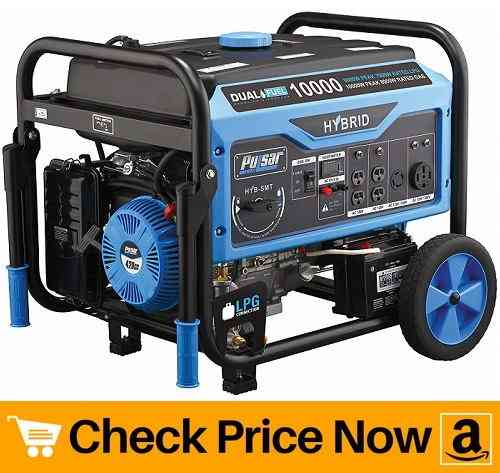 Pulsar Products Dual Fuel Portable Generator