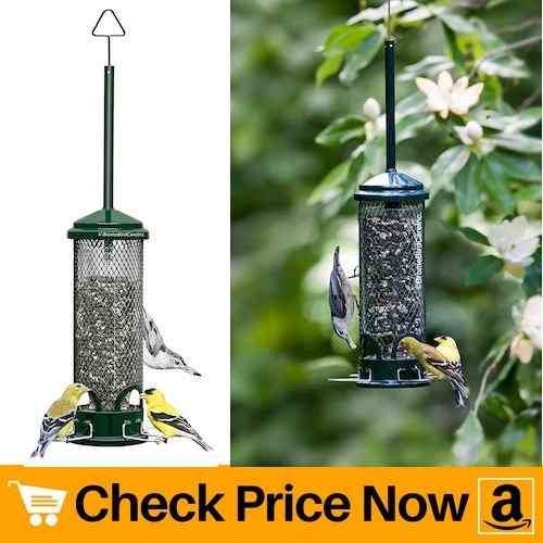Squirrel Buster Mini 4.4x4.4x21 - Best squirrel proof bird feeder