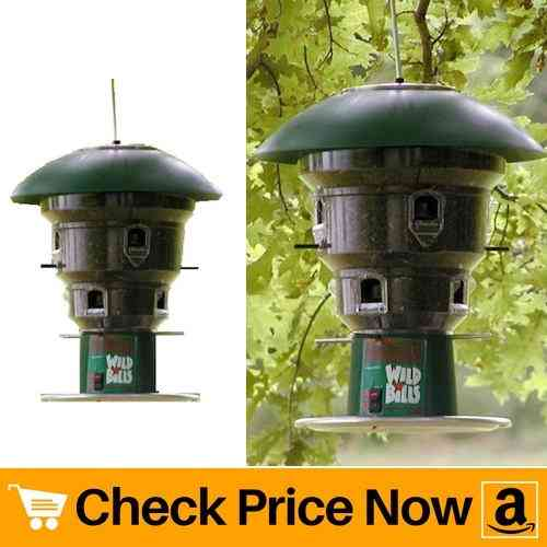 Wild Bill's 8 Station Squirrel Proof Bird Feeder Review