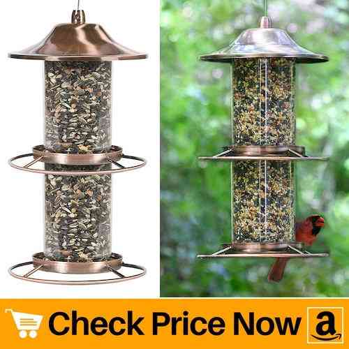 High Quality Cheapest Bird Feeder