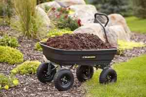 Best Dump Cart Reviews