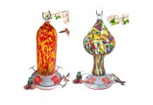 Best Hummingbird Feeder Reviews