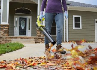 Best Battery Operated Leaf Blower Reviews